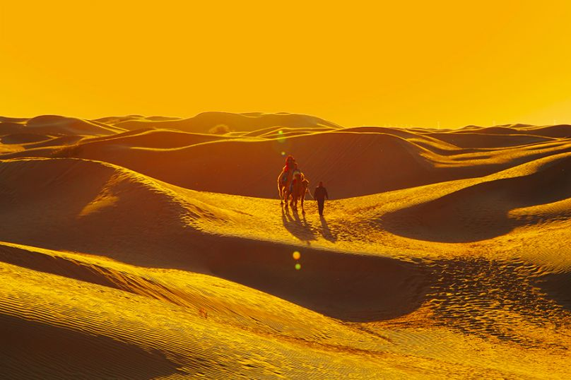 击退炎炎夏日的草原天堂 99%的人都错过了! 旅游资讯 第25张