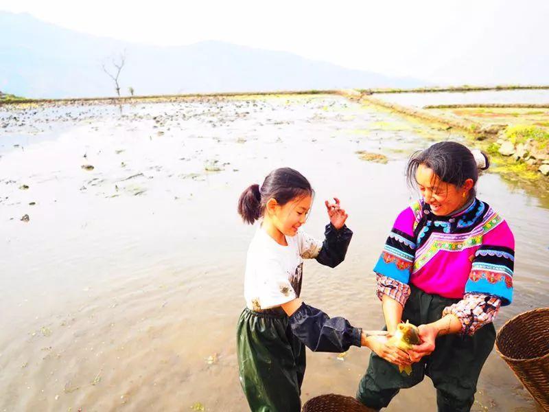 在云南康藤红河谷帐篷营地 寻找被世界遗忘的文明 旅游资讯 第29张