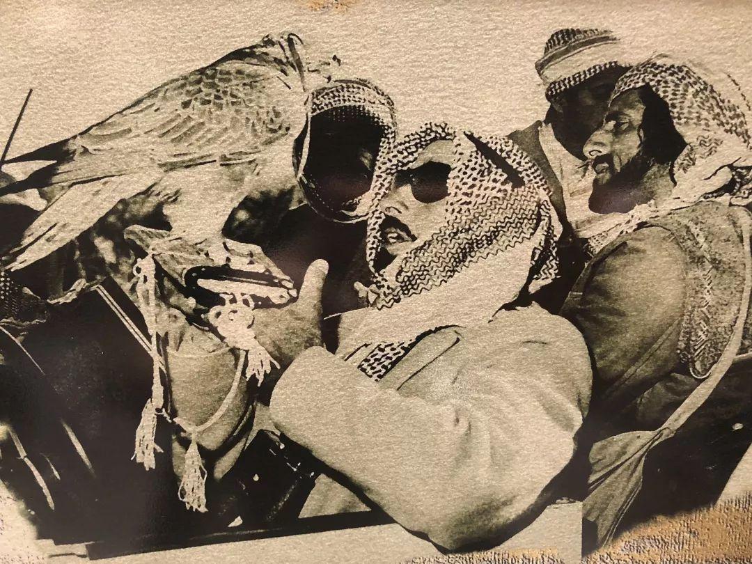 """要说起迪拜的""""壕""""无人性 阿布扎比可谦虚不起来 旅游资讯 第69张"""