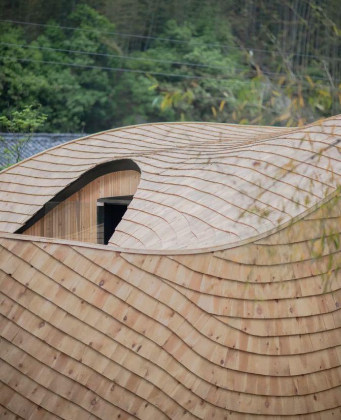 把几何木屋搬到浙江山中 国内首个树蛙部落一开业就爆满 旅游资讯 第8张