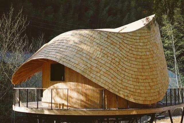 把几何木屋搬到浙江山中 国内首个树蛙部落一开业就爆满 旅游资讯 第2张