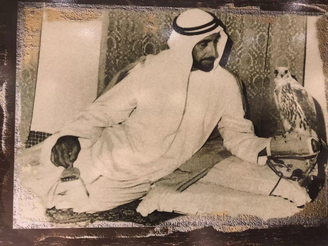 """要说起迪拜的""""壕""""无人性 阿布扎比可谦虚不起来 旅游资讯 第67张"""