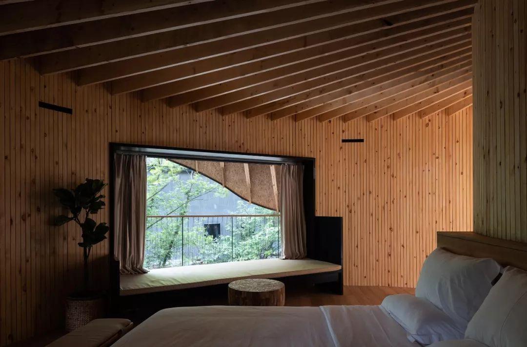 把几何木屋搬到浙江山中 国内首个树蛙部落一开业就爆满 旅游资讯 第11张