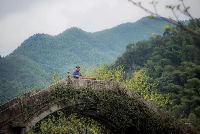 把几何木屋搬到浙江山中 国内首个树蛙部落一开业就爆满 旅游资讯 第4张