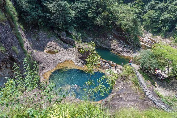 夏日避暑新去处!浙江这几个原始森林 媲美神农架 旅游资讯 第13张
