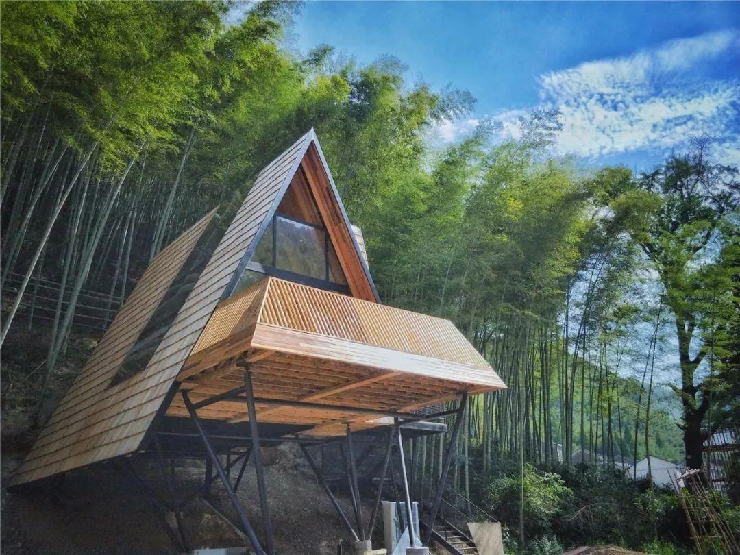 把几何木屋搬到浙江山中 国内首个树蛙部落一开业就爆满