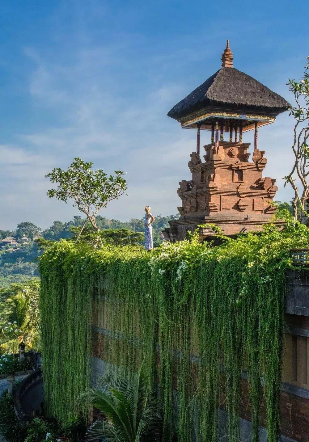 全球仅三家的避世归隐  一家就在巴厘岛乌布! 旅游资讯 第1张