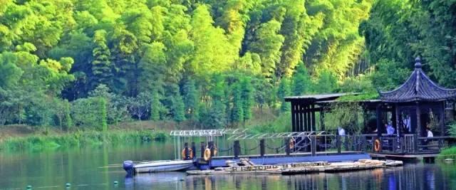 夏日避暑新去处!浙江这几个原始森林 媲美神农架 旅游资讯 第5张